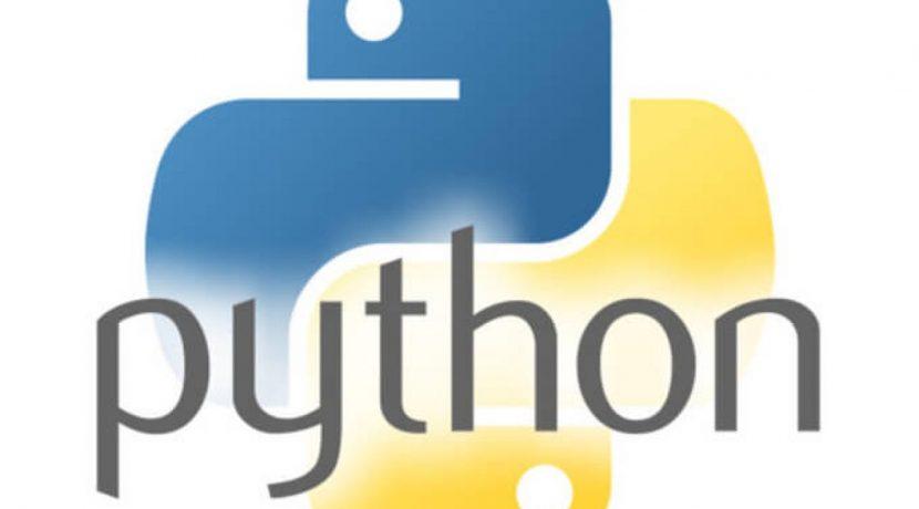 A Importância da Linguagem Python para Profissionais de Segurança