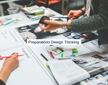 Design Thinking Professional (DTPC)